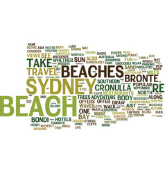 Beaches in spain text background word cloud vector