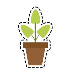 plant icon image vector image