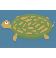 Sea turtle vector
