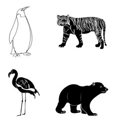 set of zoo animals vector image