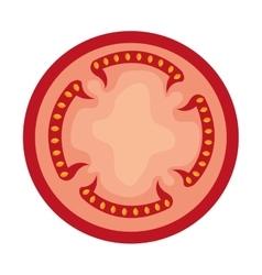 tomato slice red graphic vector image