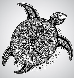 Hand drawn monochrome doodle turtle decorated with vector