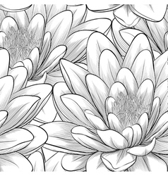 Black and white seamless pattern with lotus flower vector