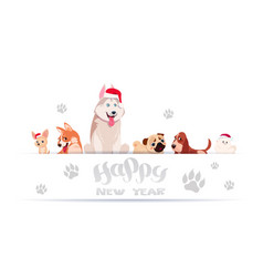 group of cute dogs sitting on white background vector image