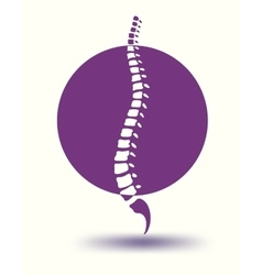 Human spine backbone in violet circle vector