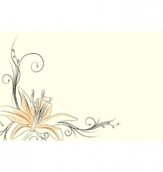 outline lily vector image