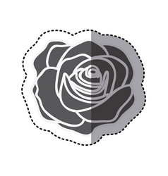 Contour rose with oval petals and leaves icon vector