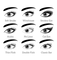 Eye makeup types infographic vector image vector image