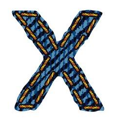 Farmerke tekstura slovo X resize vector image