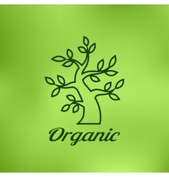 Linear of Organic green tree vector image