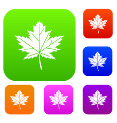 maple leaf set collection vector image vector image