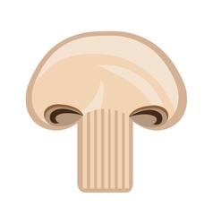 Slice of mushroom graphic vector