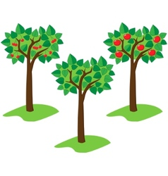 summer trees vector image