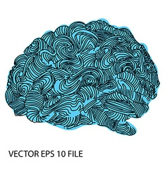 Bright sketchy doodles about brain vector image vector image
