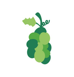 Christmas green grape icon vector