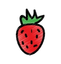 Strawberry fresh fruit drawing icon vector