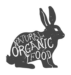 Hand Drawn Farm Animal Rabbit Natural Organic Food vector image vector image