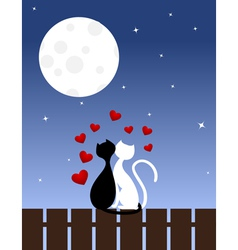 Cats sit on a fence vector
