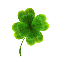 green leave of clover realistic vector image vector image