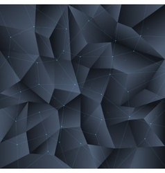 Polygon black crystal background with connecting vector image vector image