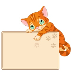 Cute kitten Invite or Placard vector image