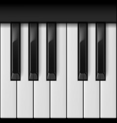 Piano keys cool for creative design vector