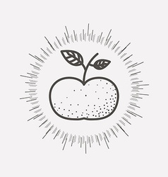 Fruit healthy food vector