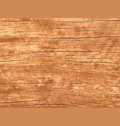 wood texture for background vector image