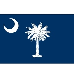Flag of South Carolina correct size color vector image