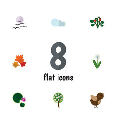 Flat icon bio set of floral lotus bird and other vector