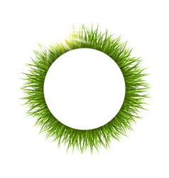 Circle frame with grass and sunlight floral nature vector