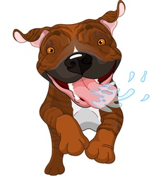 Excited brindle pit bull dog vector