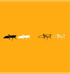 grasshoper it is white icon vector image vector image