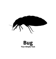 silhouette bed bug vector image vector image