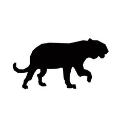 Tiger silhouette animal wild dangerous predator vector