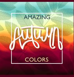 Amazing autumn colors vector