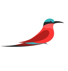 Bee Eater vector image