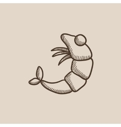 Shrimp sketch icon vector