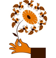Hand with bee flower vector image