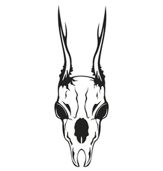 Skull roe vector