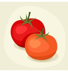 Stylized of fresh ripe tomatoes vector