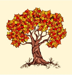 Alone spring tree with colored leaves in a vector image vector image