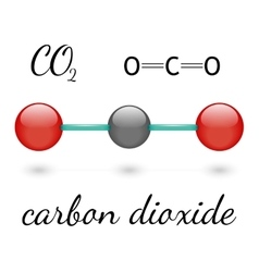 Co2 molecule vector