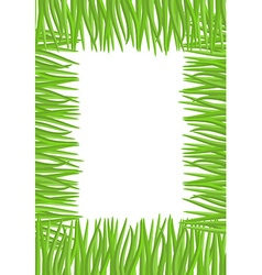 Frame of green grass Natural with space for vector image
