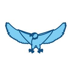 hawk eagle symbol vector image