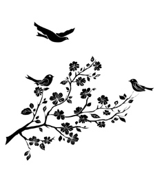 twig cherry blossoms and birds vector image