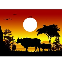 Cow silhouettes with landscape background vector