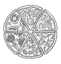 Set slice pizza pepperoni hawaiian margherita vector