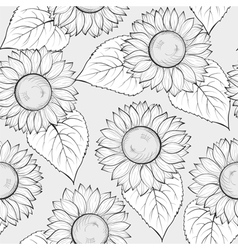 Black and white seamless background with sunflower vector