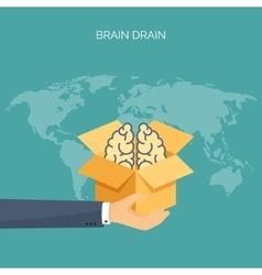 Brains academic cap Brain drain Study creative vector image